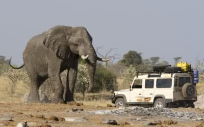 Private safaris in africa